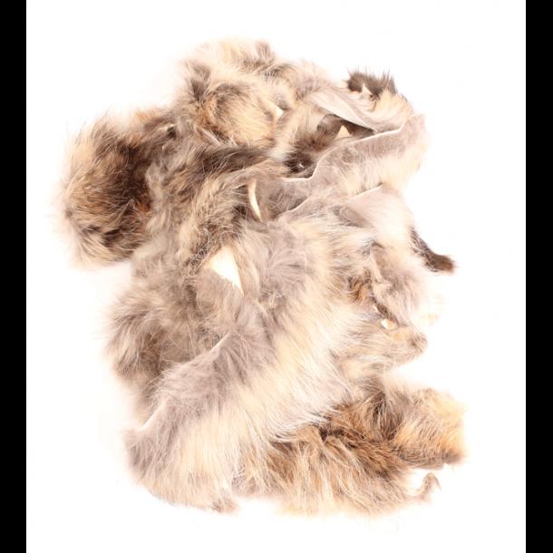 Coyote rester ca. 1 kg Prærieulv